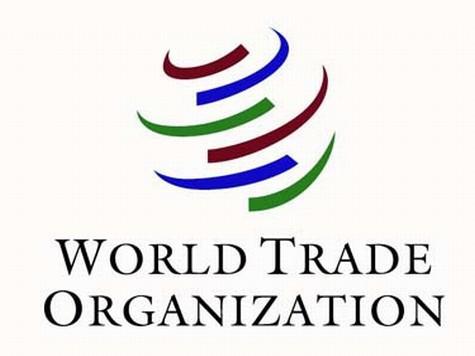 Грузия согласилась пустить Россию в ВТО
