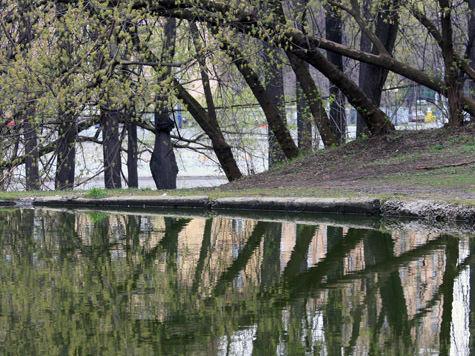 Москва — вторая по экологии в стране после Курска