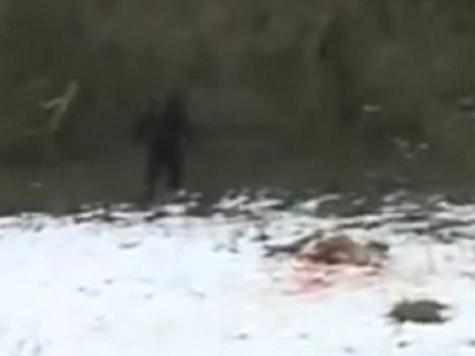 В Ингушетии поймали снежного человека