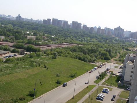 Парк в Раменках уничтожат в уплату долга