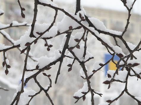 Во второй половине марта в московском регионе температура воздуха будет ниже нуля