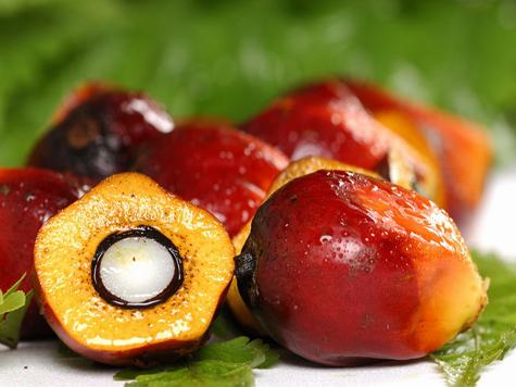 Можно ли употреблять маргарин в составе которого пальмовое масло