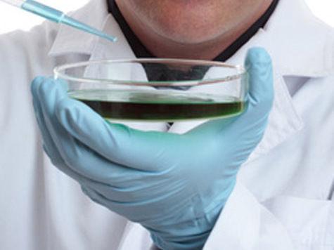Российский генетик считает, что «Нобелевки» по медицине был достоин другой кандидат