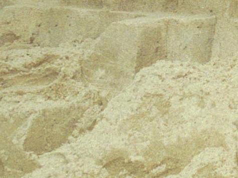 Подмосковные полицейские пресекли незаконную добычу песка в карьере у деревни Заовражье Солнечногорского района