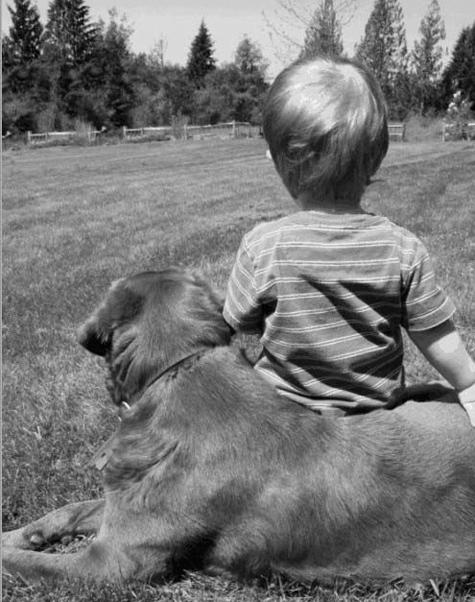 Заблудившегося ребенка согрела собака