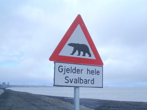 Арктика на замке