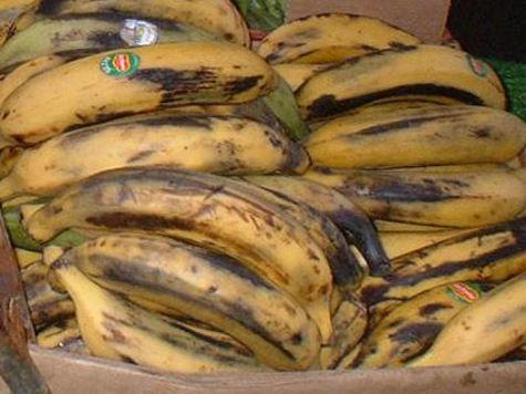119 кг кокаина привезли в Подмосковье с бананами и молитвами