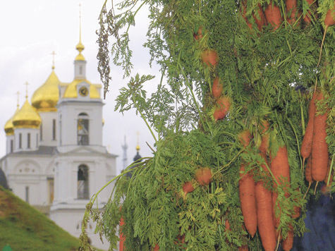 Прибавку  к зарплате сулят морковь  и томат