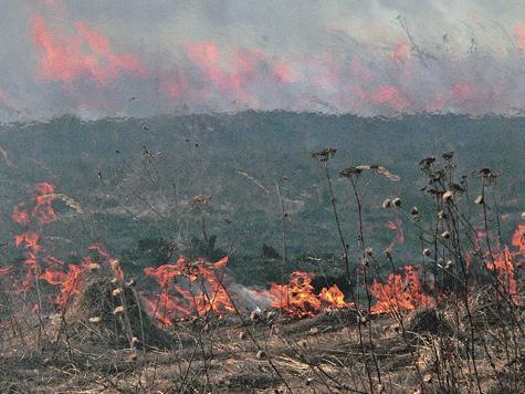 Почему при тушении загорания в лесу погибли восемь пожарных-парашютистов