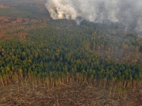 Энергетики наломали дров