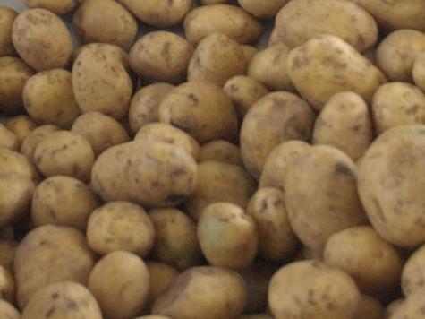 У ветерана отняли жизнь вместе с картошкой