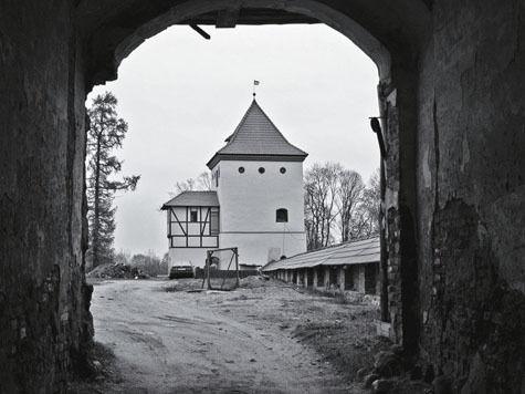 Белоруссия на машине за три дня: замки, зубры и драники