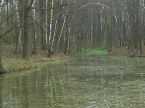 Тропаревский пруд наполнят заново