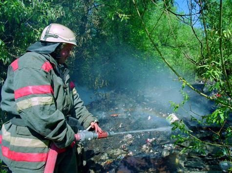 В Подмосковье ситуация с лесными пожарами под контролем