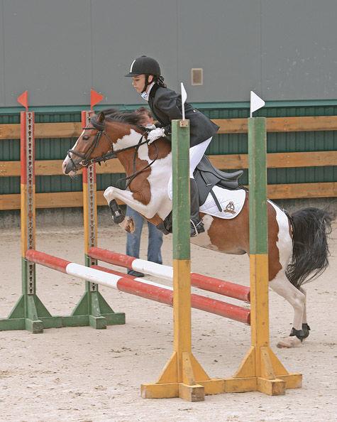 150 сантиметров коня
