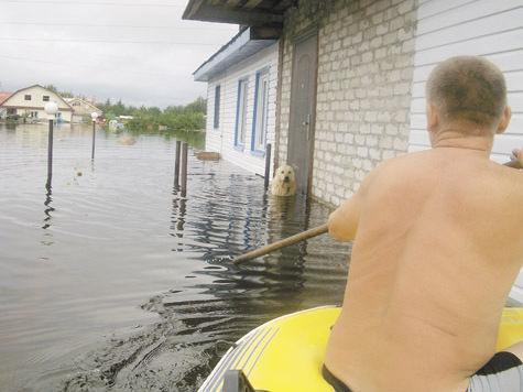 Жертвы потопа в Приморье отказываются от компенсаций