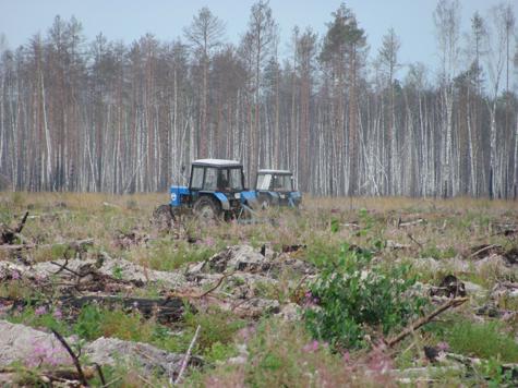 Лес рубят - форвардеры гудят