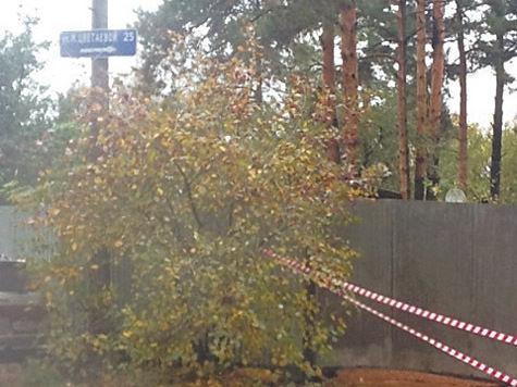 Накануне 8 Марта свой пост по как бы собственному желанию покинула руководитель администрации города Королева Елена Логвиненко