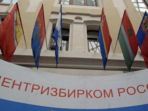 Новый член ЦИК Денис Паньшин предлагает аккредитацию наблюдателей на выборах