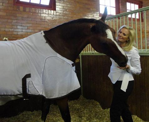 Троянский конь Ромни