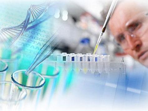 Очередной прорыв новосибирских ученых в медицине