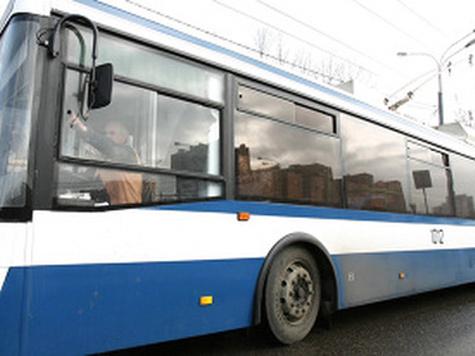 Автобусам пришли на подмогу мини-дублеры
