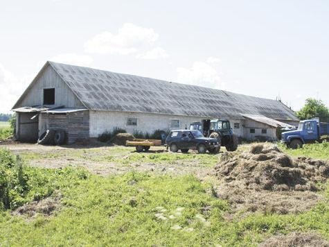 Как придать ферме достойное содержание?