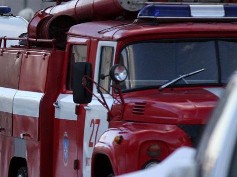 В Москве дети выпрыгнули из окна горящей квартиры