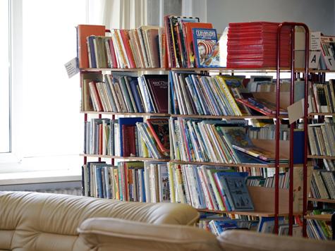 Библиотеки и парки могут стать платными