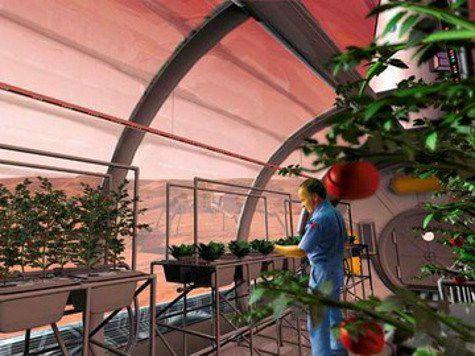 Исследователи приступили к изучению питания будущих колонизаторов Марса