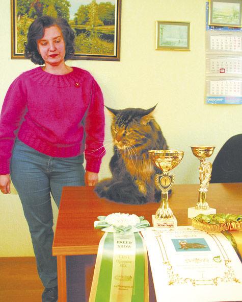 Кот из Клина стал чемпионом мира
