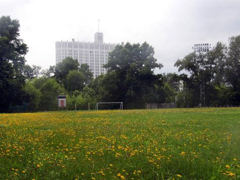 Новым местом работы депутатов может стать стадион