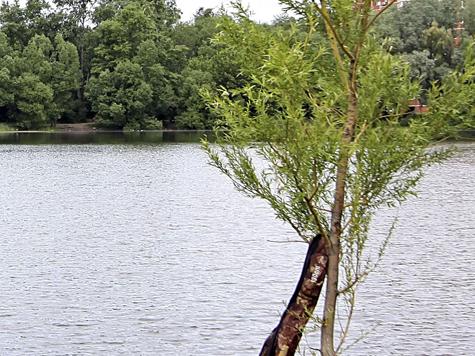 Сразу два ребенка утонули в прудах Москвы и области в минувшие выходные по недосмотру родителей
