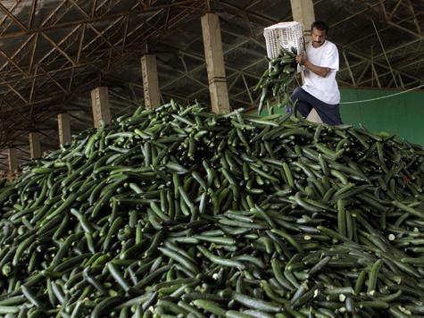 """""""Овощная"""" инфекция не изменит нормы по контролю продуктов"""