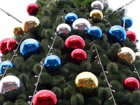На елках чиновников посчитали ветки