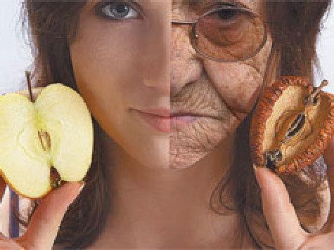 Международный коллектив исследователей обнаружил один из ключевых элементов, управляющих процессом старения