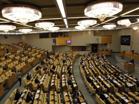 СПЧ просит Госдуму дать обществу обсудить