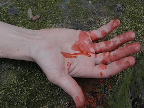 Резня в Кущевской напомнила сатанинский ритуал