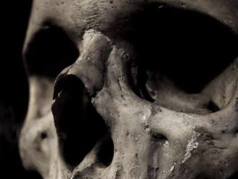 Смерть - это всего лишь иллюзия, утверждает профессор Ланца
