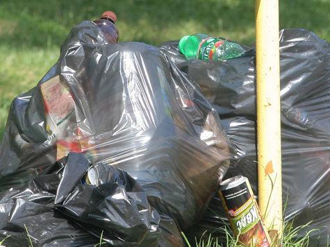 На Юго-Востоке случится «мусорная революция»