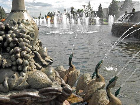 Фонтан восполнит за зиму запас гусей