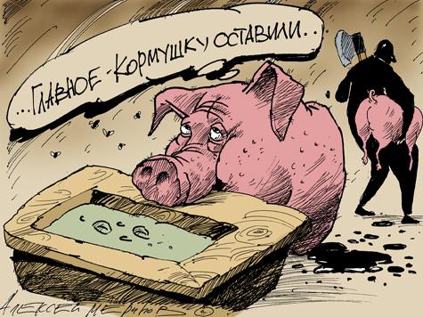 Земля у МКАД стоит 120 рублей за сотку