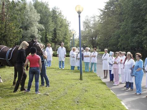 Персонал кремлевской больницы дополнится лошадьми