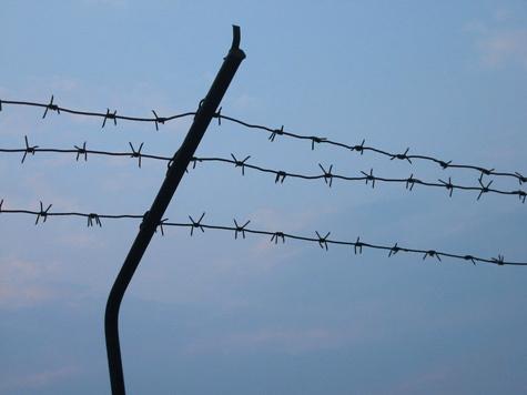 Уголовника толкнули в петлю разговоры о тюрьме