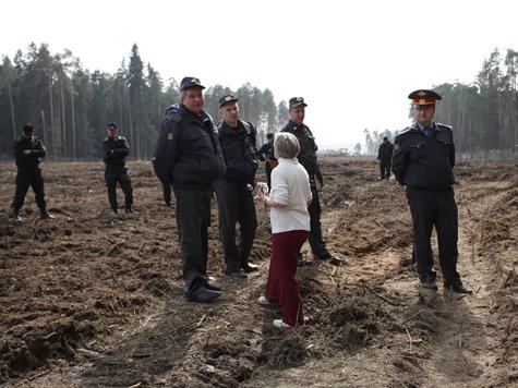 Государство признало вырубку Цаговского леса незаконной