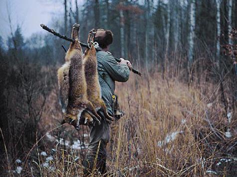 Охотники против закона об охоте