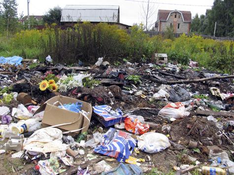 Подмосковье очистят от мусора