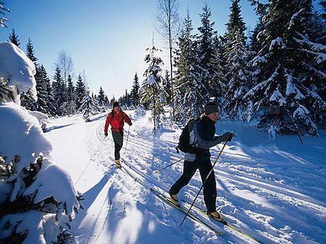 Вместо бесплатных лыжных прогулок москвичей загонят в платные надувные палатки