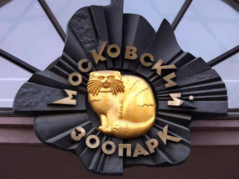 Из московского зоопарка могут убрать скульптуру Церетели