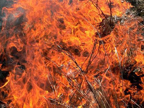В Павловском Посаде преступник пытался сжечь ребенка
